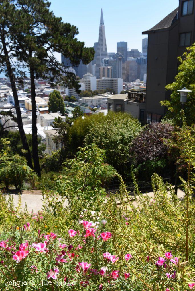 Transamerica Pyramid da Macondray Lane San Francisco