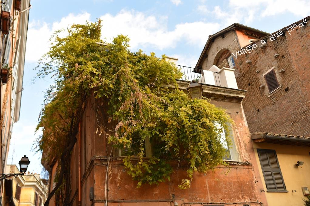Trastevere Roma dove mangiare