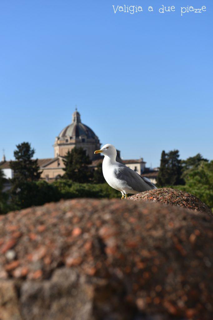 Roma dove mangiare centro storico