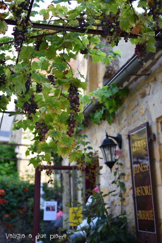 viti nel villaggio di Domme