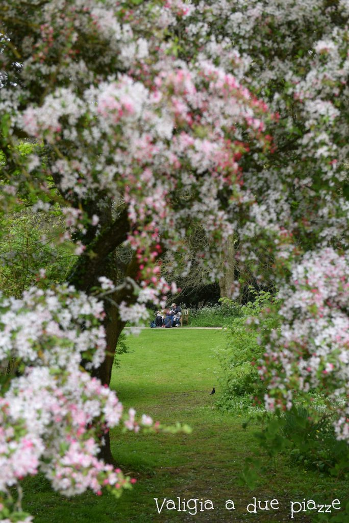 Abbazia e giardino Lacock