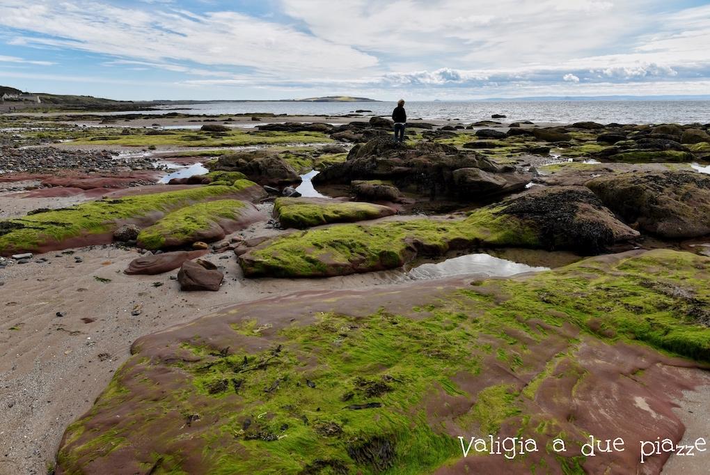 spiaggia kingdom of fife scozia