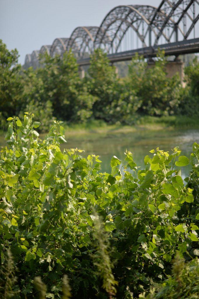 Ponte della Gerola e fiume Po