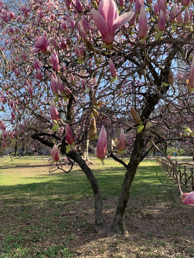 Giardini Indro Montanelli Milano