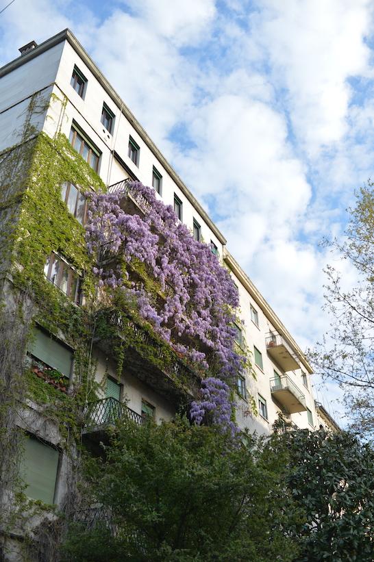 viale Majno Milano