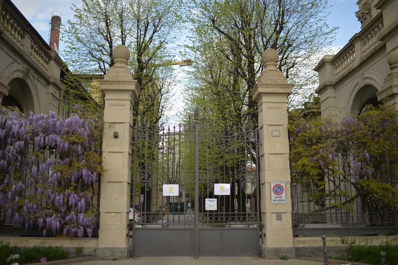 glicini Politecnico Milano